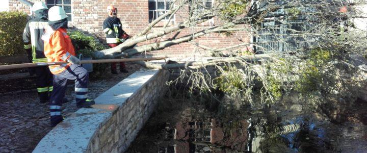 Einsatz 13/2017 (05.10.2017) Hilfeleistung allgemein: Umgestürzte Bäume