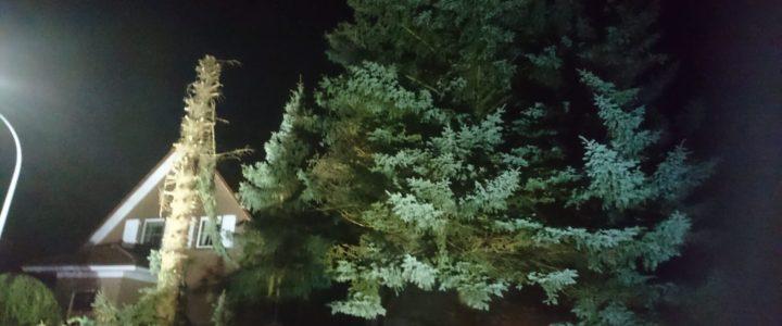 Einsatz 04/2018 (18.01.2018) Hilfeleistung allgemein: Baum droht auf Haus zu stürzen